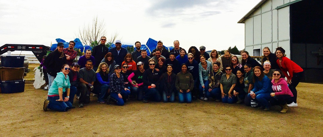 Colorado Credit Union staff member group photo of volunteer day at farm